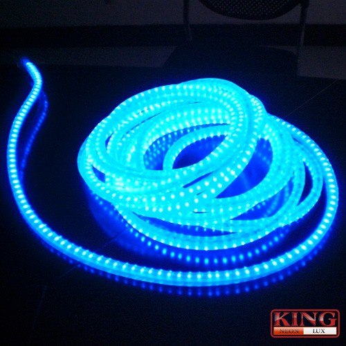 13mm round led rope lights high intensity rope lights2 wiresred led rope lights aloadofball Image collections